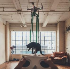 kitten Drone