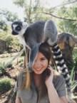 Bindi Irwin with a lemur on her head