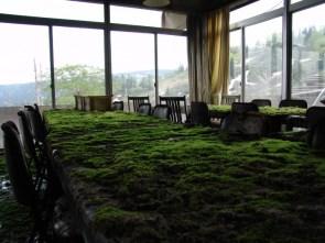Green Board Room