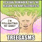 The reason you have allergies