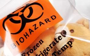 biohazard bear