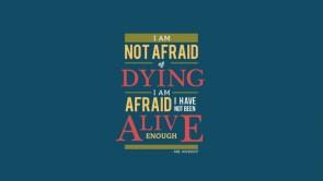 mr nobody is afraid