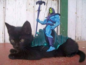 skeletor kitten mount