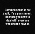 Common sense is a punishment