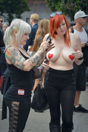 Heart Shaped Nipple Guards