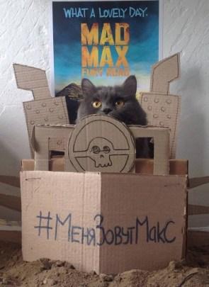 Mad Max Kat