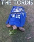 The Tordis