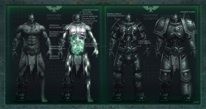Anatomie Astartes
