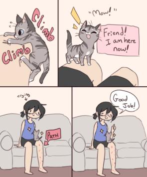 Kitten Climber