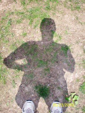 Shadow Bush