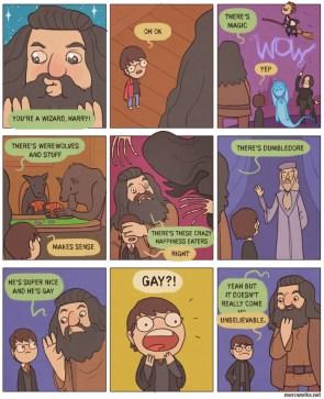 gay wizards
