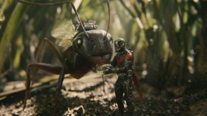Antman – Feeding Time