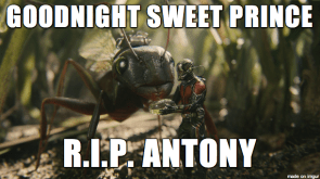 Good Night Sweet Prince