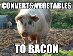Vegetable Converter