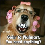Going to Wal-Marts