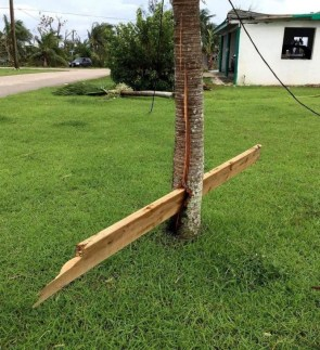 Tornado plank
