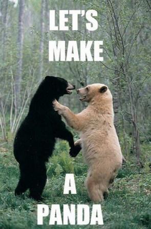 let's make a panda