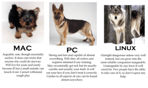 if computers were dogs