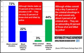 races killed by police
