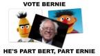 Vote Bernie – part bert, part ernie