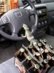Gecko Driver