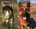 fallout dog comparison