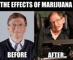 the effects of marijuana