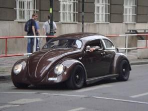 Sporty Bug