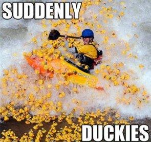 Suddenly Duckies