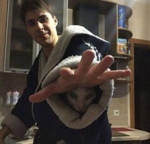 robe cat