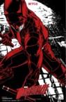 Netflix's Marvel's Daredevil's Poster