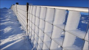 high wind ice fence