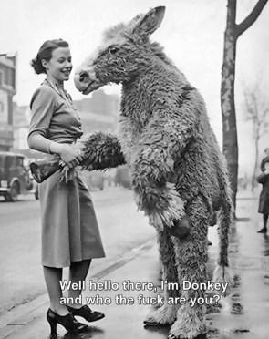I'm Donkey