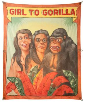 Girl to Gorilla (also known as Saturday night/Sunday morning)