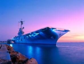 Purple Carrier