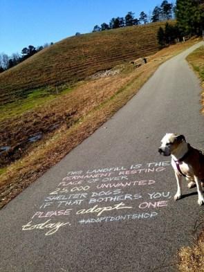 dog message
