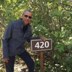 obama 420 sign