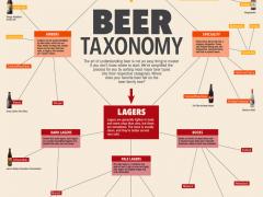 Beer Taxonomy Wallpaper