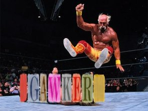 hogan vs gawker