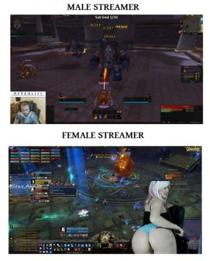male vs female streamers