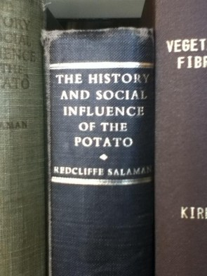 the history and social influence of the potatoe