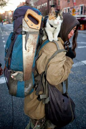 Dangerous Traveler with cute cat