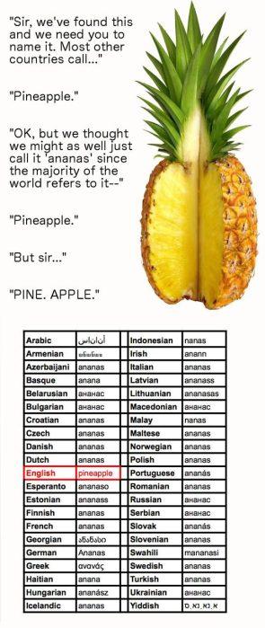 Pineapple Humor