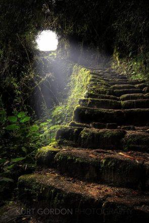 The Climb by Kurt Gordon