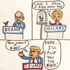 political birds