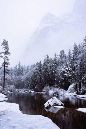 white landscape with black river
