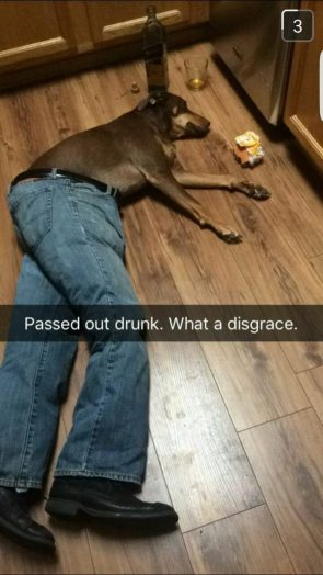 passed out drunk