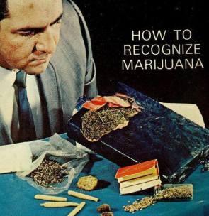 How To Recognize Marijuana