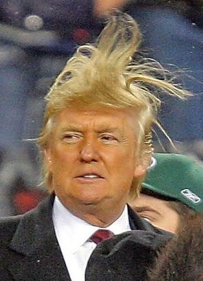 The Trump's Hair is alive
