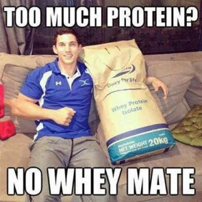 Too much Protein